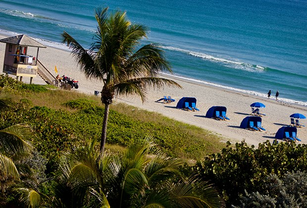 25 Things To Do with Kids in Palm Beach County, Florida