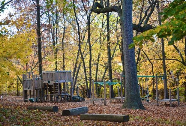 Devoy's shady playground