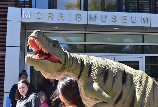 25 Fun Things To Do with Kids in Morristown, New Jersey