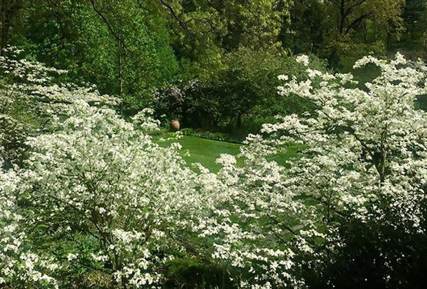 Reeves-Reed Arboretum offers family-friendly programming