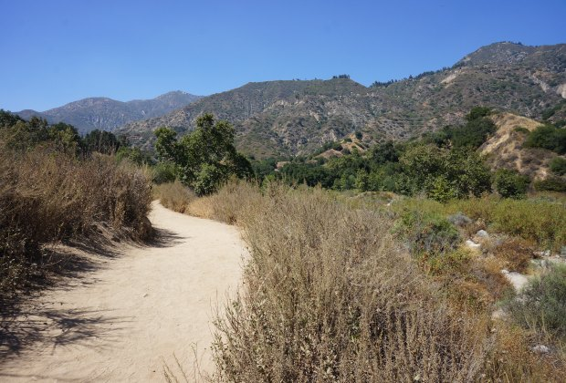 Wildlife Hikes for Kids  in Los Angeles: Eaton Canyon