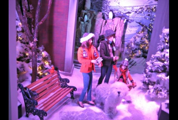A snowy Central Park scene at Lord & Taylor