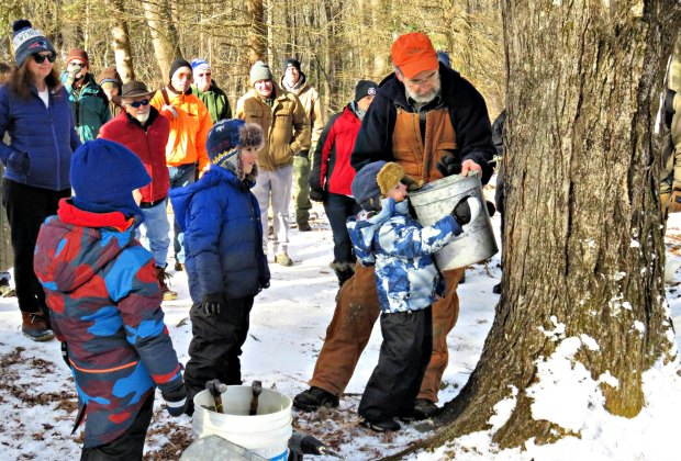Maple sugaring events are on tap across the state. Photo courtesy of Flanders Nature Center