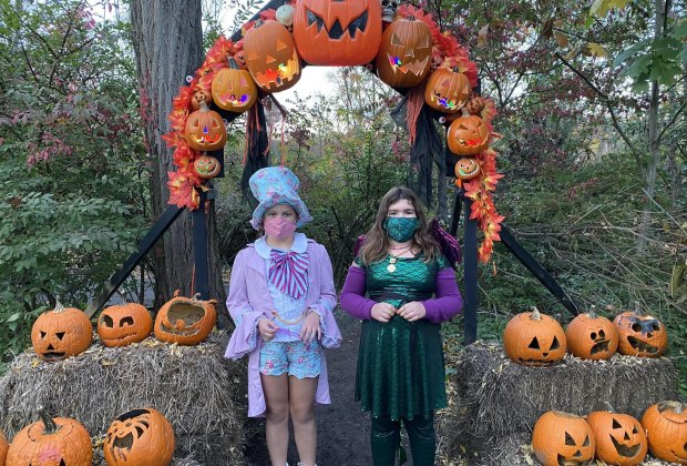 Halloween Activities Near Me Connecticut 2020 Halloween Weekend Things To Do in Connecticut: Hauntings, Drive