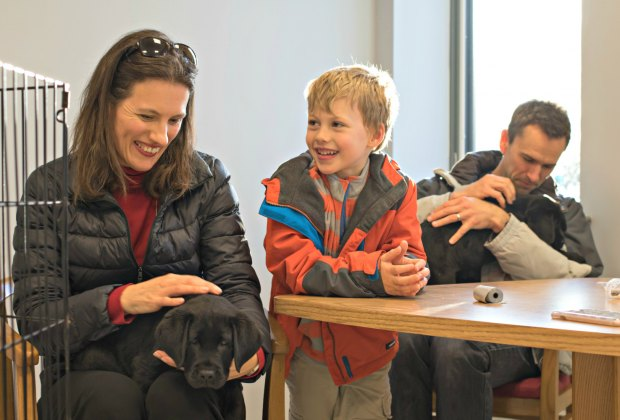 Volunteering with the Guide Dog Foundation might lead to making some furry friends
