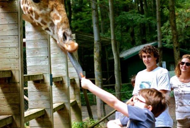 """Feeding the giraffe at Paws """"N"""" Claws"""