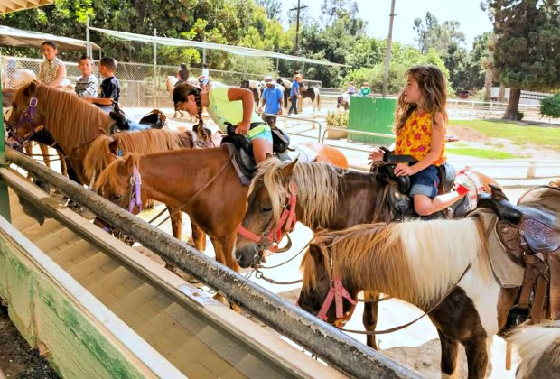 Photo courtesy of LA Department of Recreation and Parks