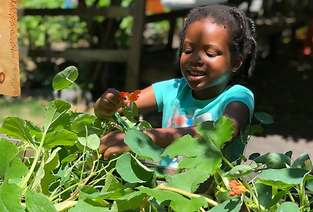 5 Kid Friendly Urban Farms Right Here In New York City Mommypoppins Things To Do In New York City With Kids