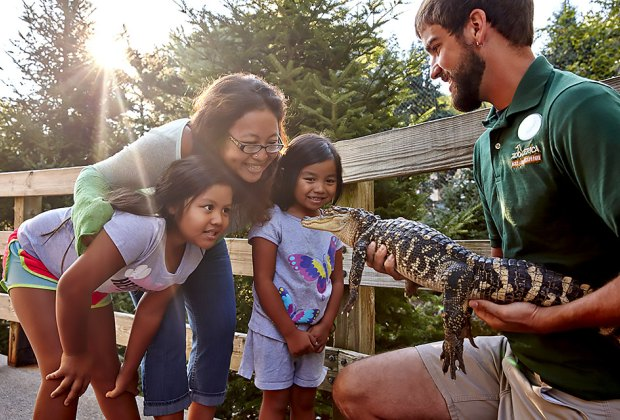Hershey, Pennsylvania, is way more than roller coasters and chocolate: ZooAmerica is a great place to slow down and meet some new friends. Photo courtesy of Hersheypark