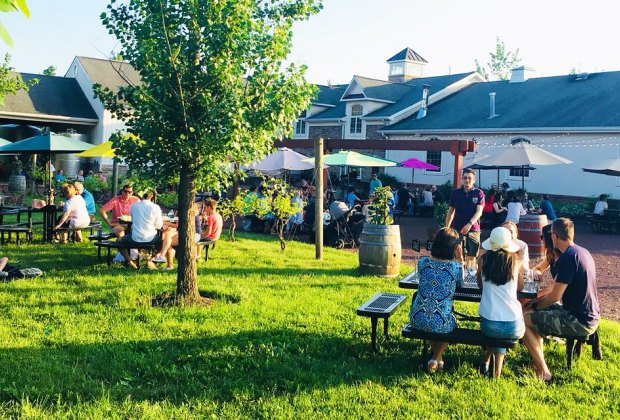 Family-Friendly Vineyards and Wineries in New Jersey