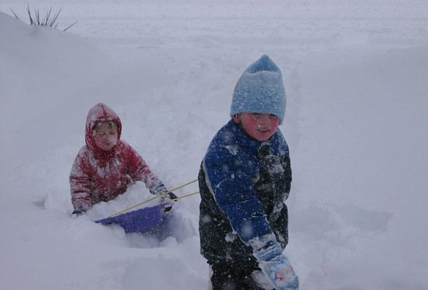 Best Places To Go Sledding On Long Island