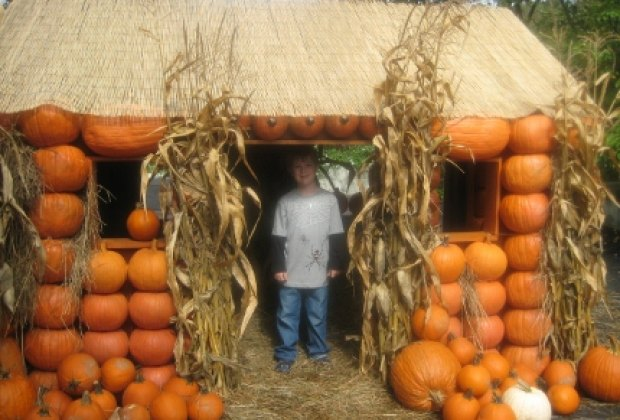 A pumpkin playhouse