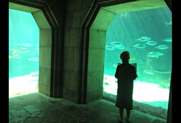 The Dig exhibit recreates The Lost City of Atlantis as it would appear today.