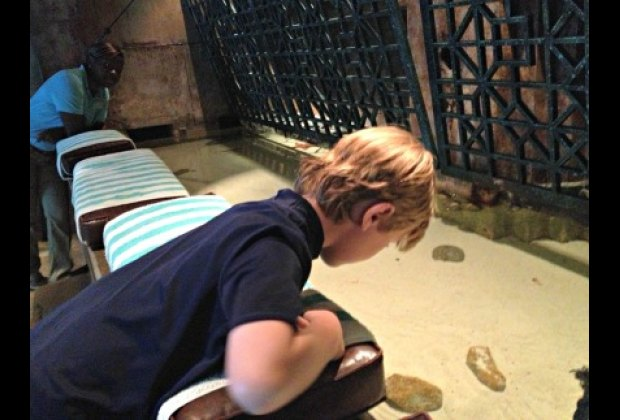Petting the local critters in The Dig's touch tank.