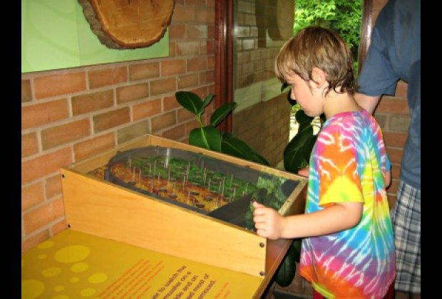 Interactive nature fun at the Greenbelt Nature Center