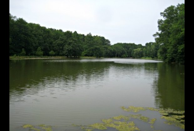 Picturesque Willowbrook Lake
