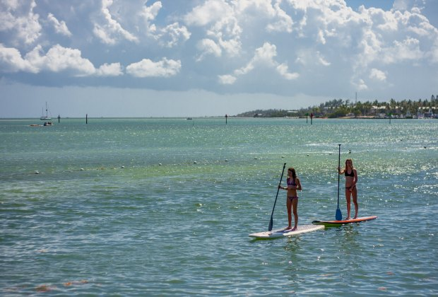 islamorada florida with kids top 15 things to do on your family rh mommypoppins com things to do in islamorada florida keys things to do in islamorada key