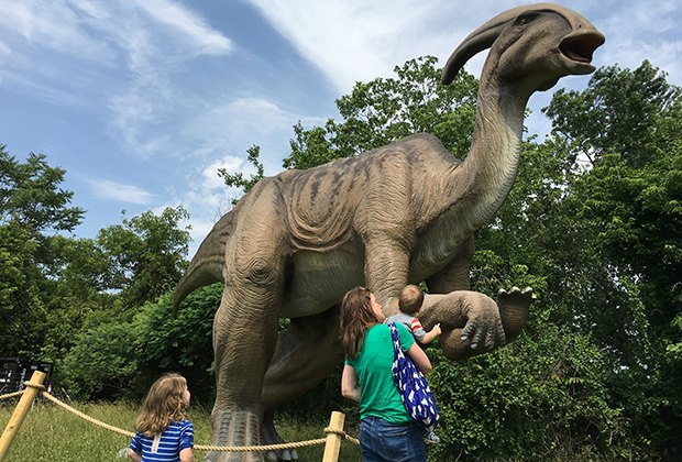 How often do you get to see life-size dinosaurs up close?