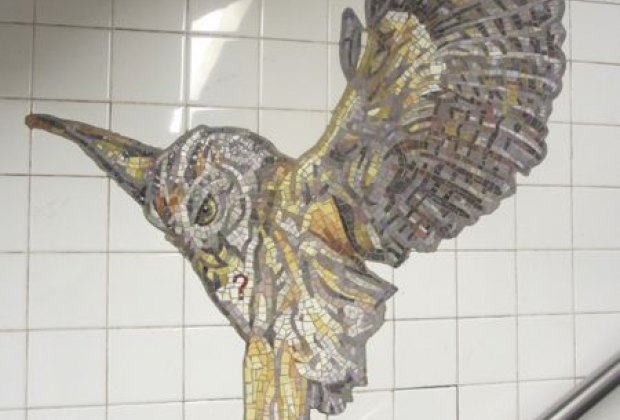 More natural wonders at the AMNH station
