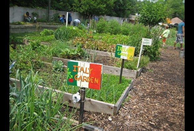 The Global Gardens in the Family Garden