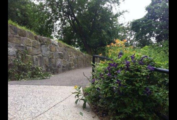 Volunteers work year-round to maintain Isham Park