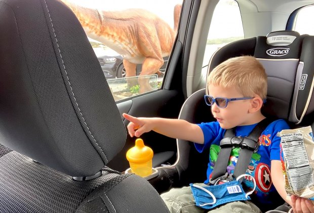 boy in car points to dinosaurs