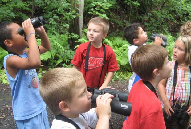 Children look to the trees at Indian Rock Nature Preserve. Photo courtesy of Environmental Learning Centers of Connecticut