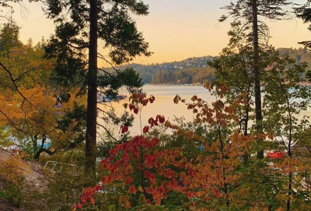 Best Things To Do with Kids in Lake Arrowhead: Fall colors