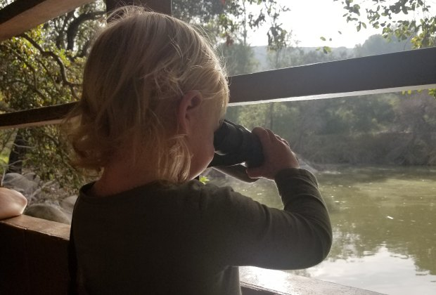 Kids can find ducks and other wildlife from the lookout deck at Descanso Gardens.