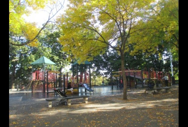 The shade-filled Lawrence Virgilio Playground in Windmuller Park