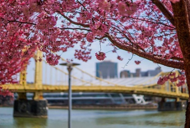 Pittsburgh's waterfront offers plenty of activities for kids. Photo courtesy of Visit Pittsburgh