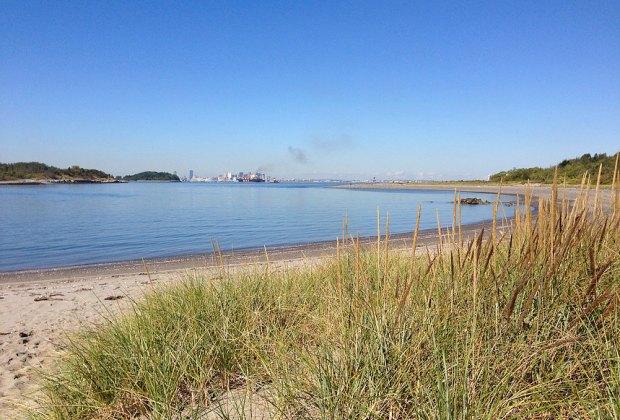 7 Hidden Gem Beaches for Families near Boston: Lovells Island