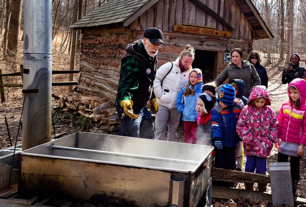 Discover the magic of maple sugaring at Brookside Nature Center. Photo by Marilyn Stone, courtesy of Montgomery Parks