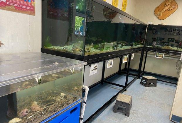 Aquariums in the Marine Education Center