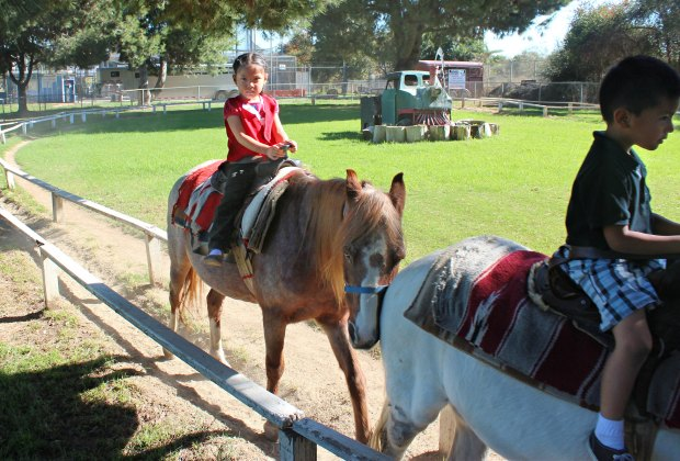 Things To Do With LA Kids Over Spring Break: Pony rides and petting zoos are always a thrill