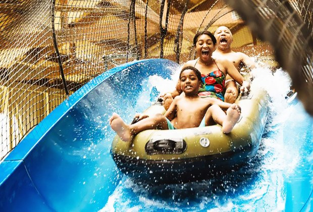 Enjoy a thrilling slide at the Great Wolf Lodge water park