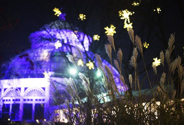 The Enid A. Haupt Conservatory serves as a backdrop for the holiday lights show at the NYBG.