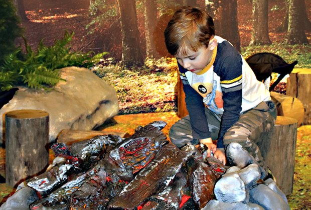 Survival: The Exhibition teaches kids hands-on skills to overcome real-world emergencies.