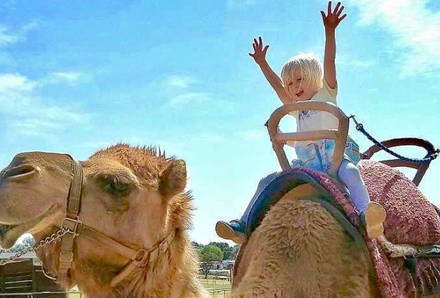Things To Do With LA Kids Over Spring Break: Or you could ride a camel!