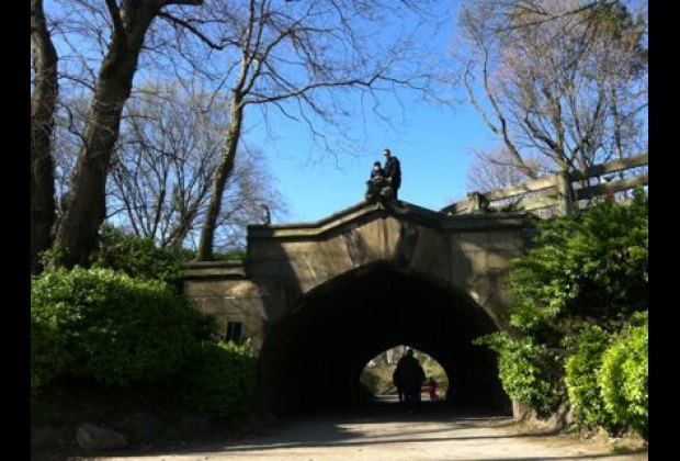 The Crown Heights' side of Prospect Park is full of fun, including the zoo