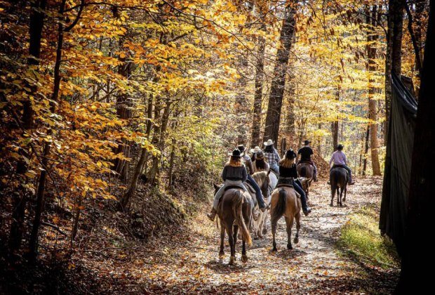 Pine Ridge Dude Ranch provides a family-friendly hotel and plenty of rustic entertainment.