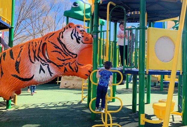 Playground fun at Franklin Park Zoo