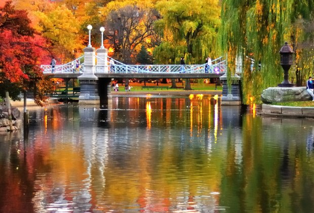 An autumn sunset is lovely in the Public Garden. Photo courtesy of Michael Krigsman via Flickr