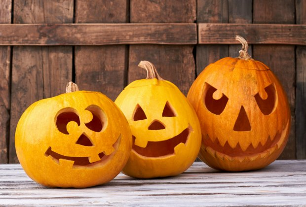 Which pumpkin carving design will you choose? Spooky or sweet?