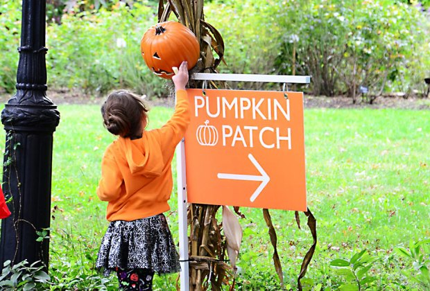Halloween Nyc Events 2020 Toddlers Not So Scary Halloween Events for NYC Preschoolers | MommyPoppins