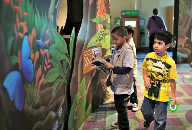 Rainforest Adventure at Discovery Cube OC. Photo courtesy of Stepping Stones Museum for Children