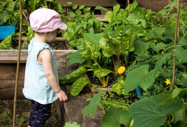 Explore the Reeves-Reed Arboretum during spring break