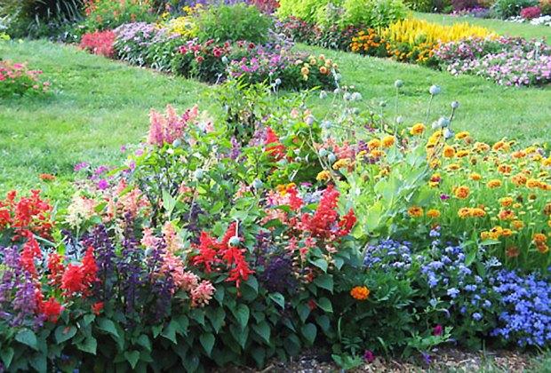 Rutgers Gardens features beautiful flooms