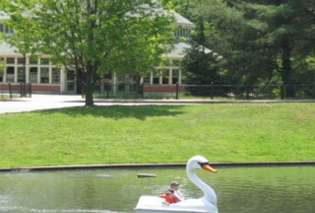 22 Things to Do With Kids at Roger Williams Park in Providence RI