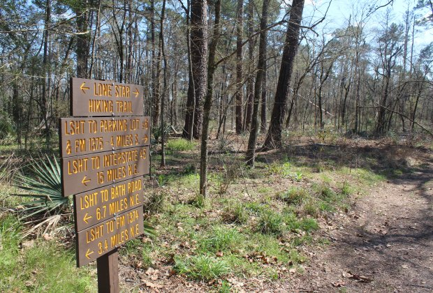 Lone Star Hiking Trail in the Stubblefield Lake Recreation Area in the Sam Houston National Forest